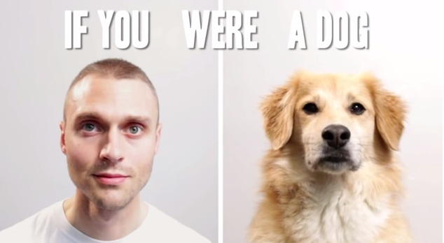 If You Were A Dog-032614