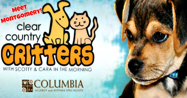 ClearCritters-Montgomery.jpg