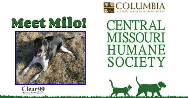 Critter-Slide-Milo
