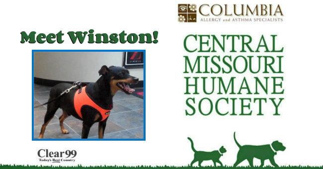 Winston-Slide