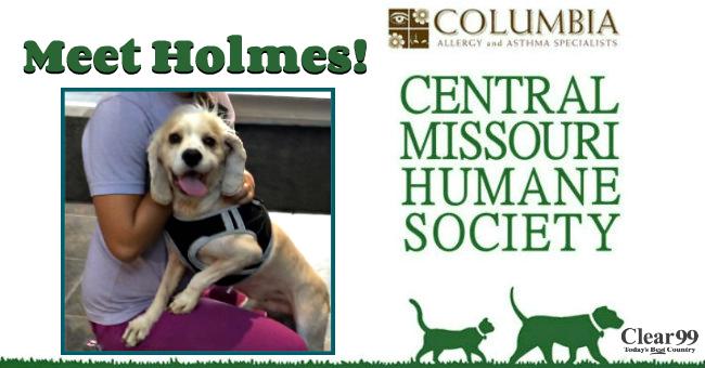 Holmes-Critter-Slide