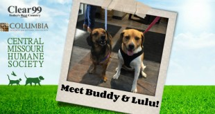 Buddy-Lulu_Slider-16