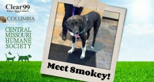 Smokey_Slider-16