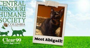 Abigail_Slider-16