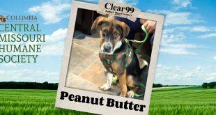 peanutbutter_slider